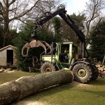 tractor picking up tree trunk pic