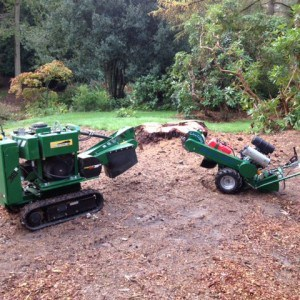 pic of narrow access stump grinders